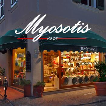 myosotis ischia